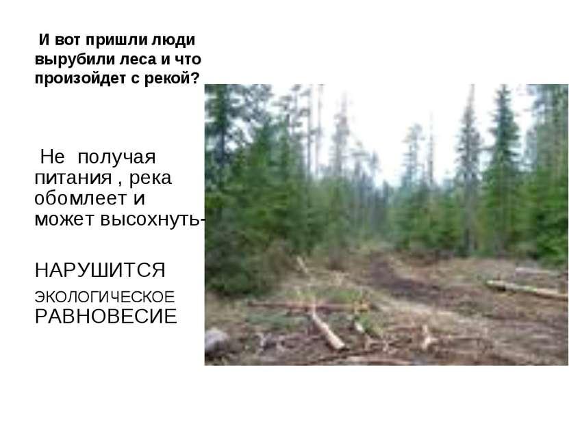 И вот пришли люди вырубили леса и что произойдет с рекой? Не получая питания ...