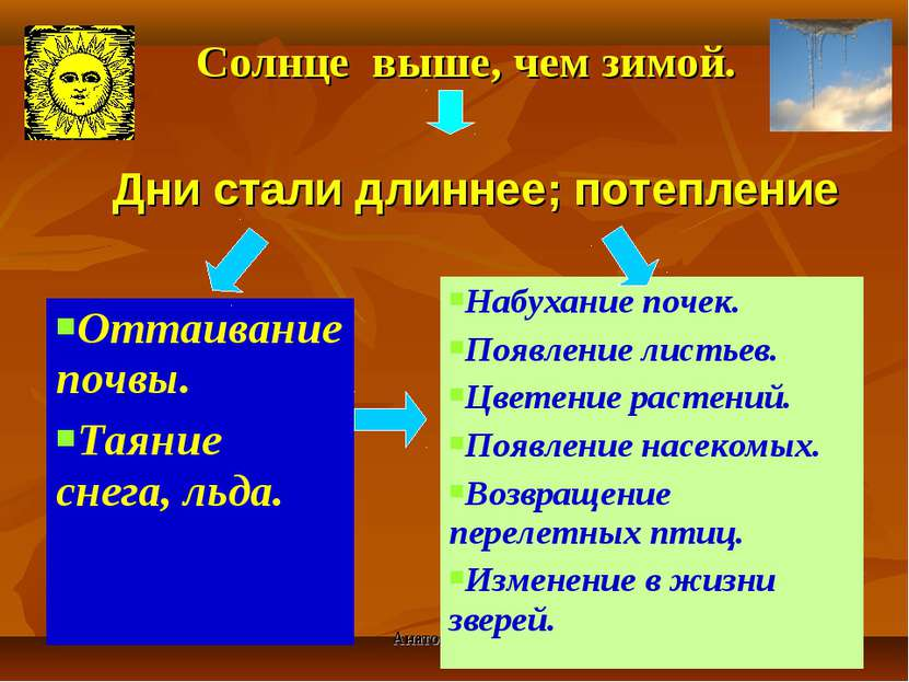 Анатольева Э.В. Солнце выше, чем зимой. Дни стали длиннее; потепление Оттаива...