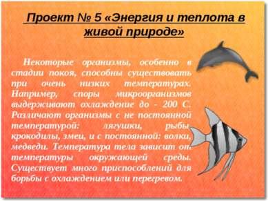 Проект № 5 «Энергия и теплота в живой природе» Некоторые организмы, особенно ...