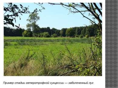 Искусственные экосистемы— это экосистемы, созданные человеком, например,агр...
