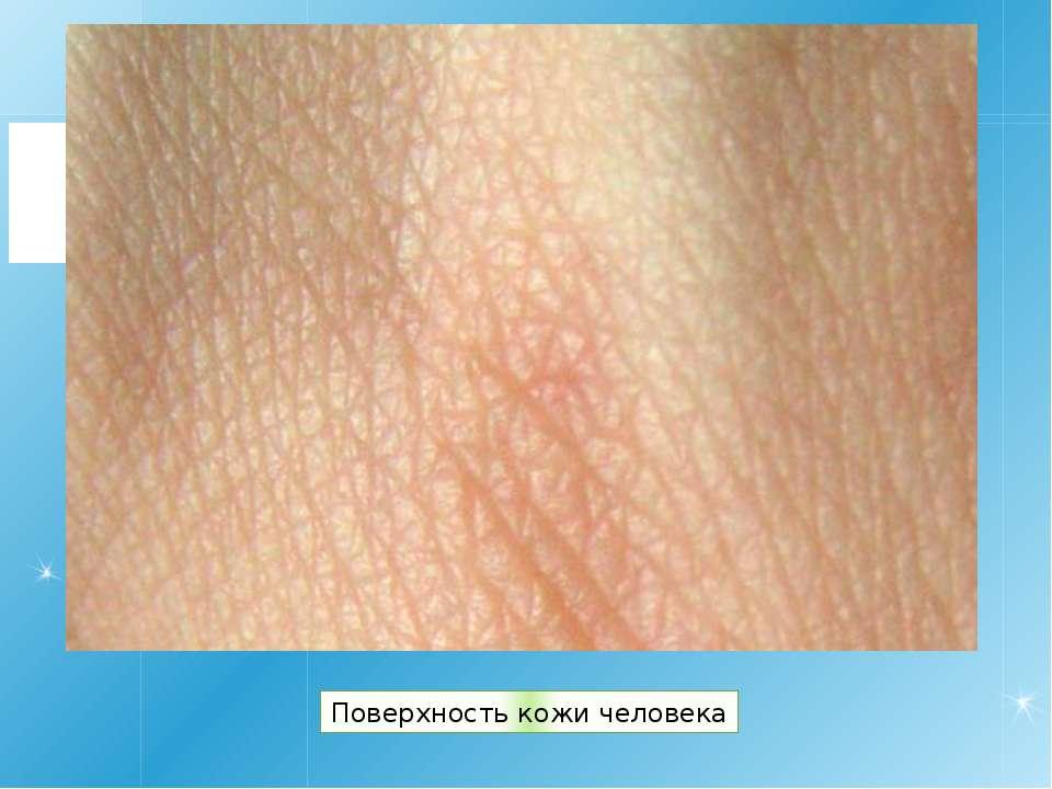 Поверхность кожи человека