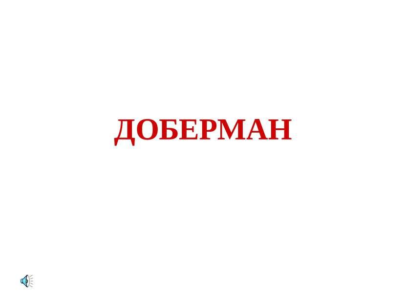 ДОБЕРМАН