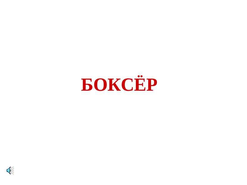 БОКСЁР