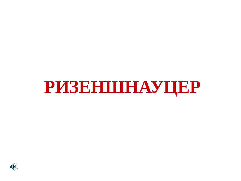 РИЗЕНШНАУЦЕР