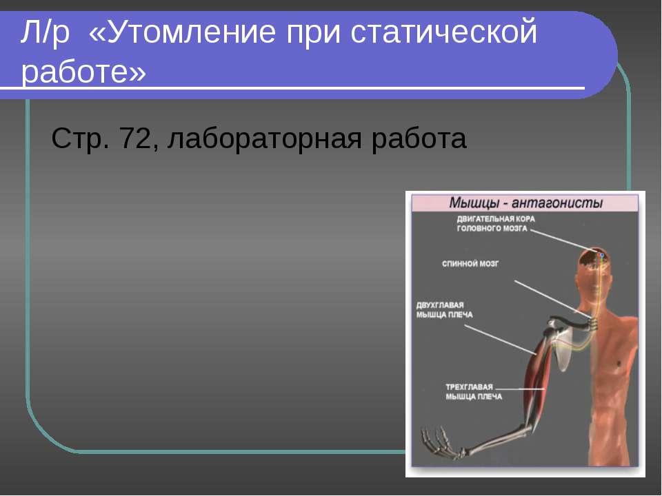 Л/р «Утомление при статической работе» Стр. 72, лабораторная работа