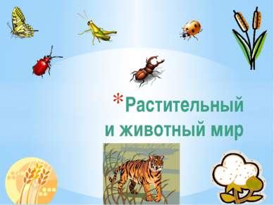 Растительный и животный мир