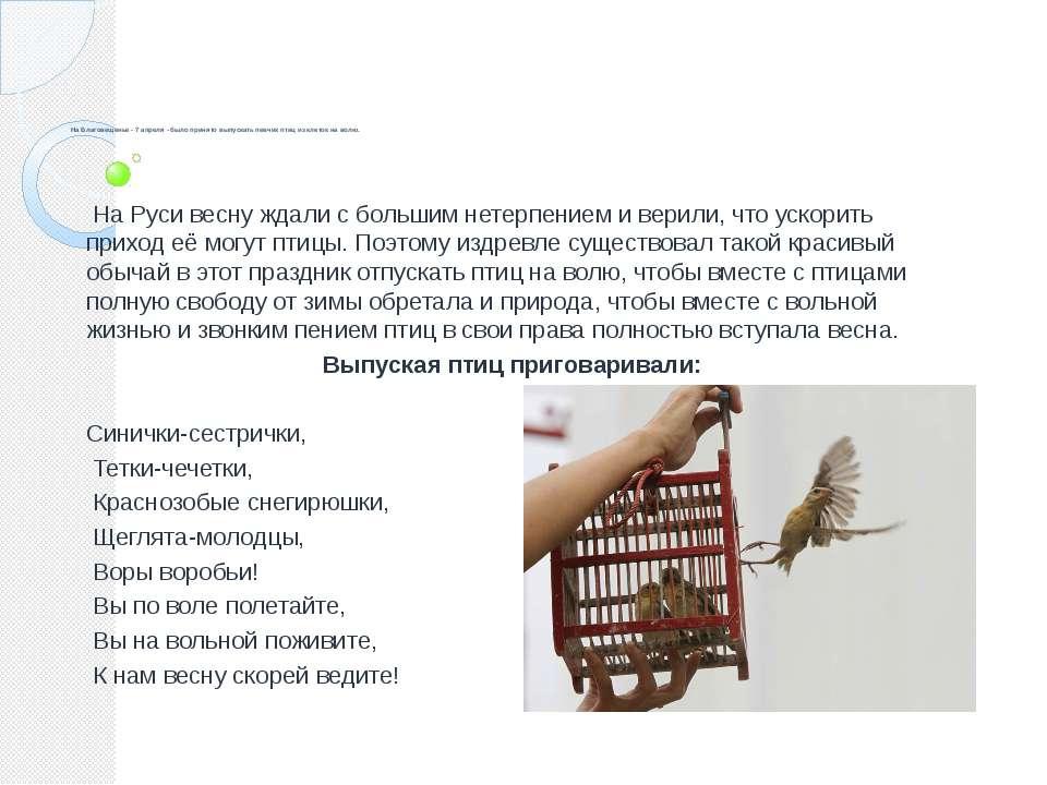 На Благовещенье - 7 апреля - было принято выпускать певчих птиц из клеток на ...