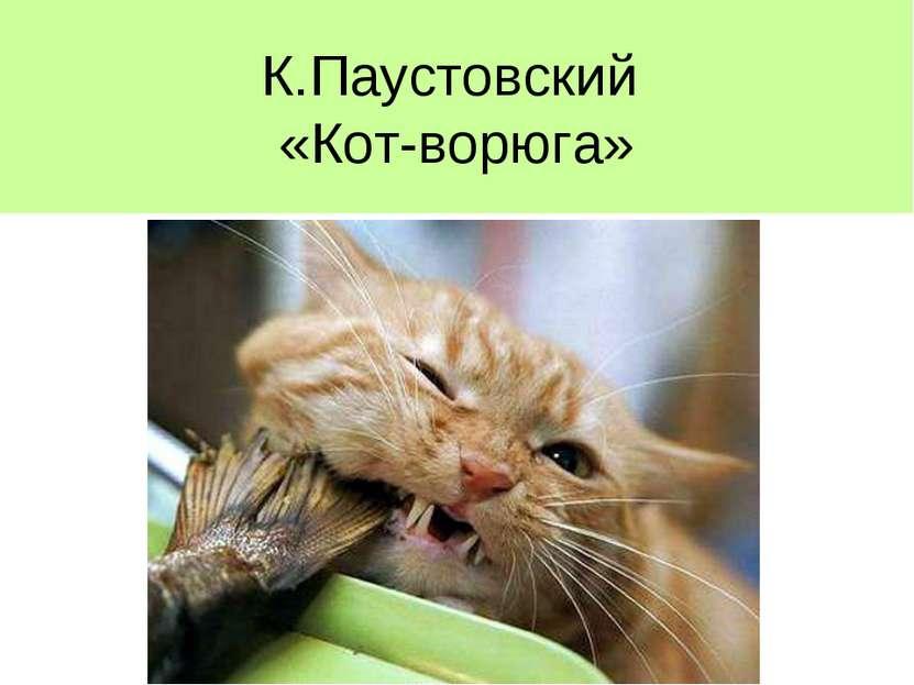 К.Паустовский «Кот-ворюга»