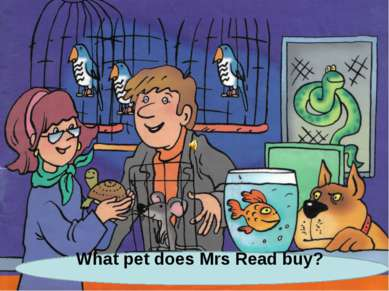What pet does Mrs Read buy?