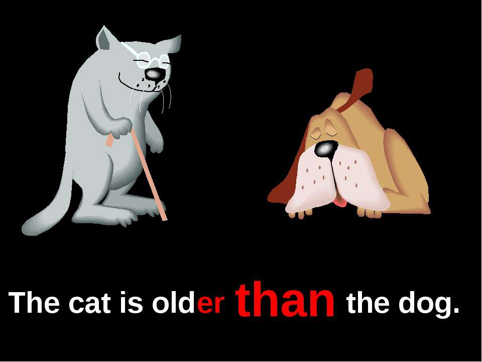 The cat is old the dog. er than