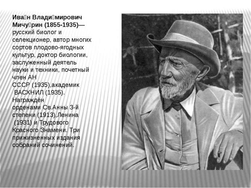 Ива н Влади мирович Мичу рин (1855-1935)— русский биолог и селекционер, автор...