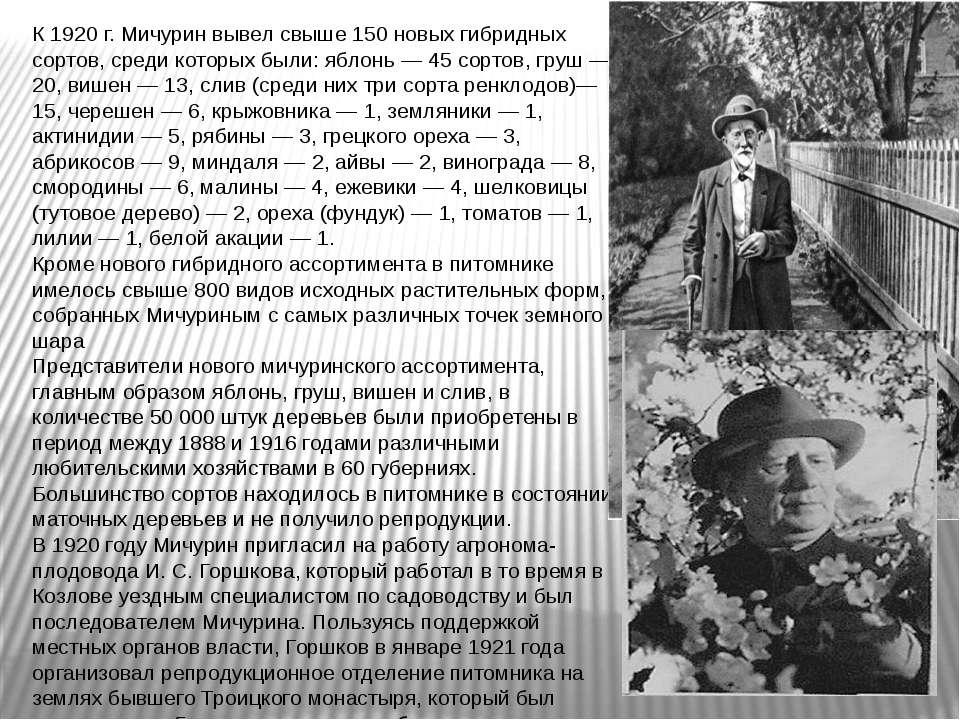 К 1920г. Мичурин вывел свыше 150 новых гибридных сортов, среди которых были:...
