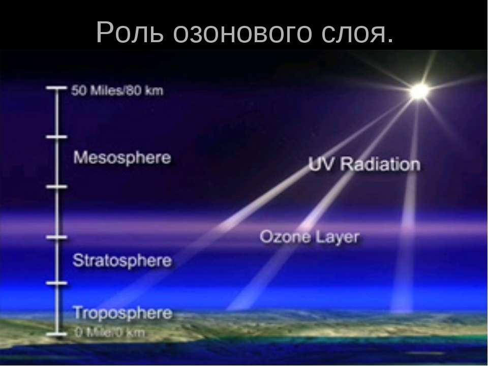 Роль озонового слоя.