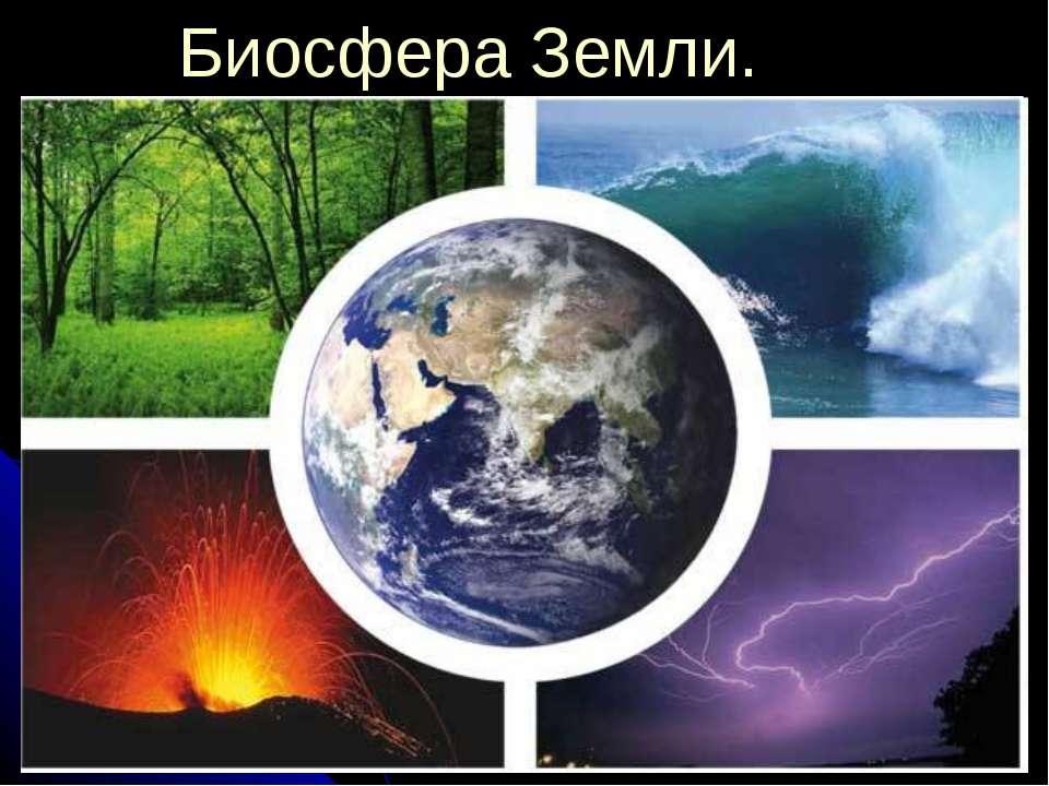 Биосфера Земли.