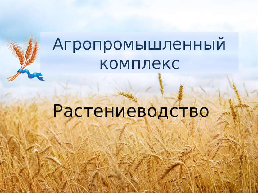 Агропромышленный комплекс Растениеводство