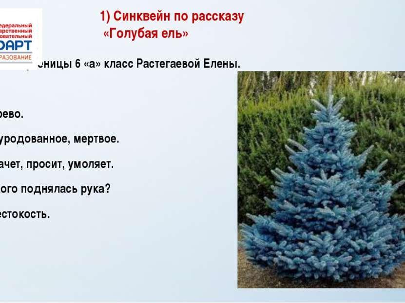 1) Синквейн по рассказу «Голубая ель» Синквейн ученицы 6 «а» класс Растегаево...