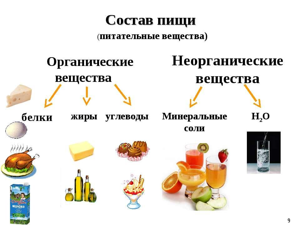 Состав пищи Органические вещества Неорганические вещества белки жиры углеводы...