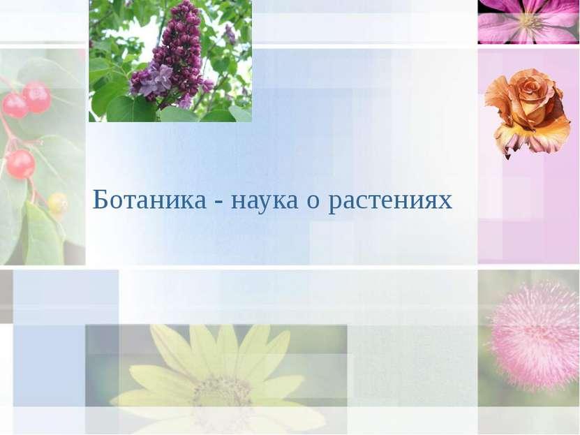Ботаника - наука о растениях