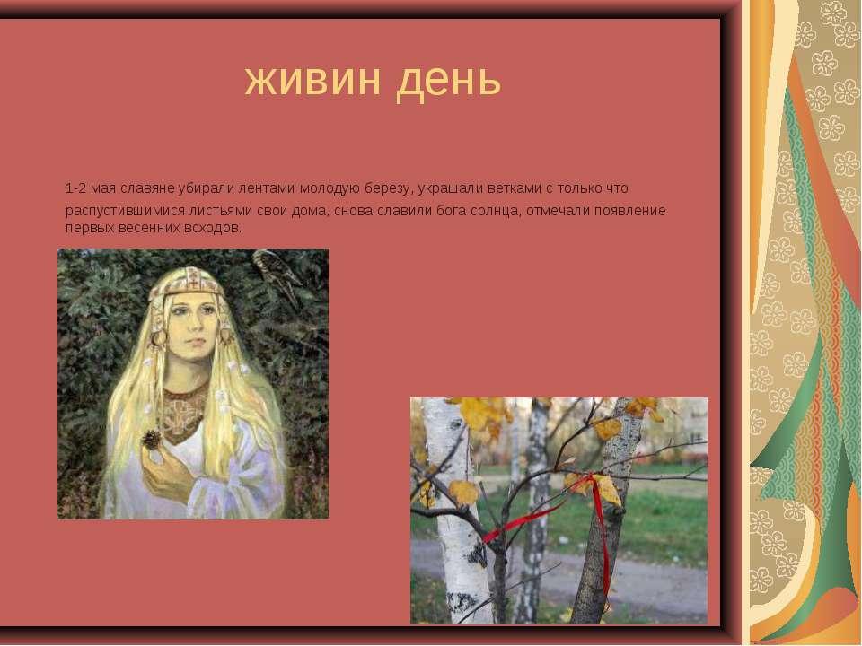 живин день 1-2 мая славяне убирали лентами молодую березу, украшали ветками с...