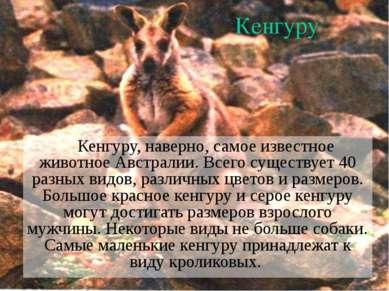 Кенгуру Кенгуру, наверно, самое известное животное Австралии. Всего существуе...