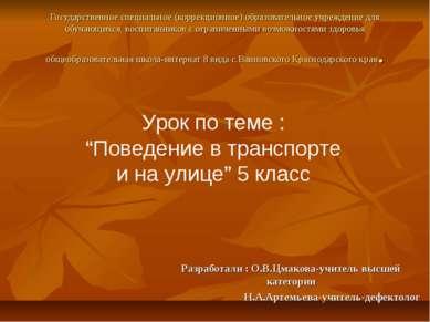 Государственное специальное (коррекционное) образовательное учреждение для об...