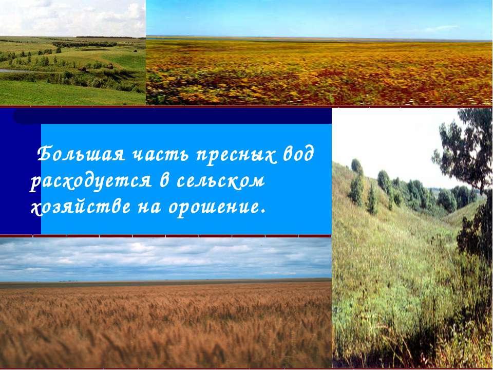 Большая часть пресных вод расходуется в сельском хозяйстве на орошение.