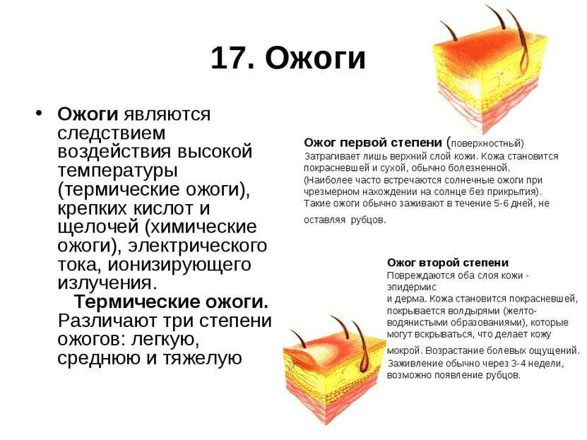 17. Ожоги Ожоги являются следствием воздействия высокой температуры (термичес...