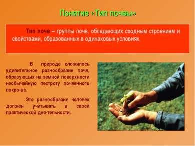 Понятие «Тип почвы» Тип почв – группы почв, обладающих сходным строением и св...