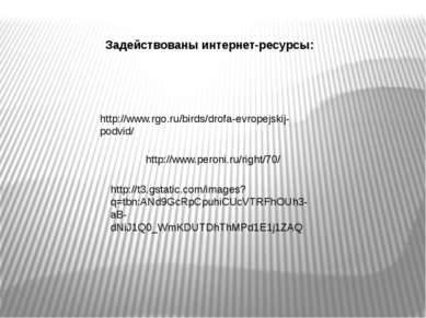 http://www.peroni.ru/right/70/ http://t3.gstatic.com/images?q=tbn:ANd9GcRpCpu...