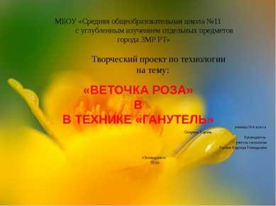 МБОУ «Средняя общеобразовательная школа №11 с углубленным изучением отдельных...