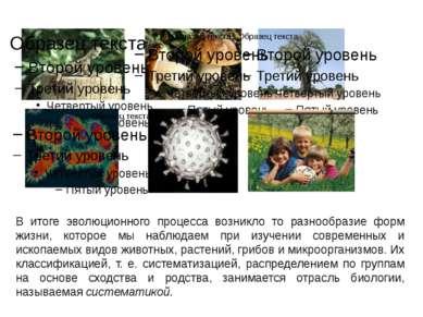 В итоге эволюционного процесса возникло то разнообразие форм жизни, которое м...