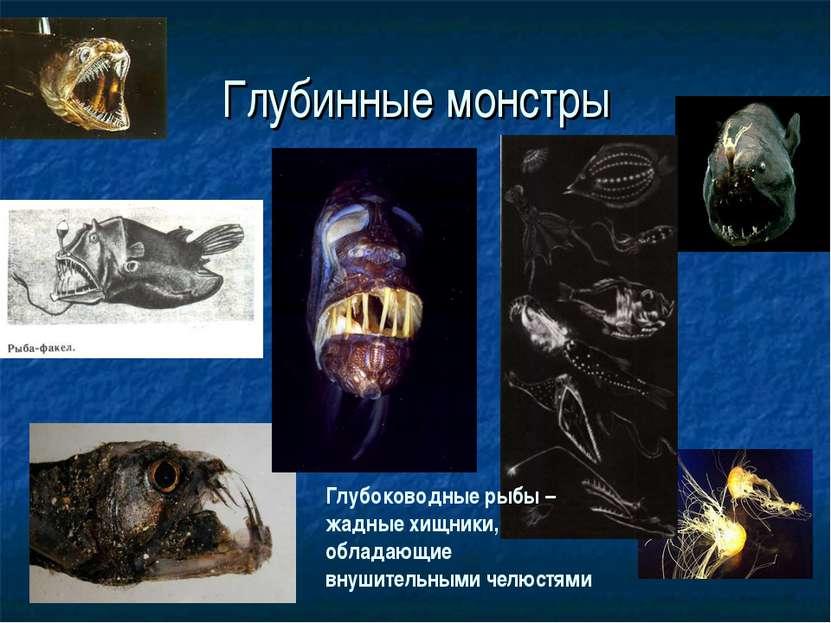 Глубинные монстры Глубоководные рыбы – жадные хищники, обладающие внушительны...