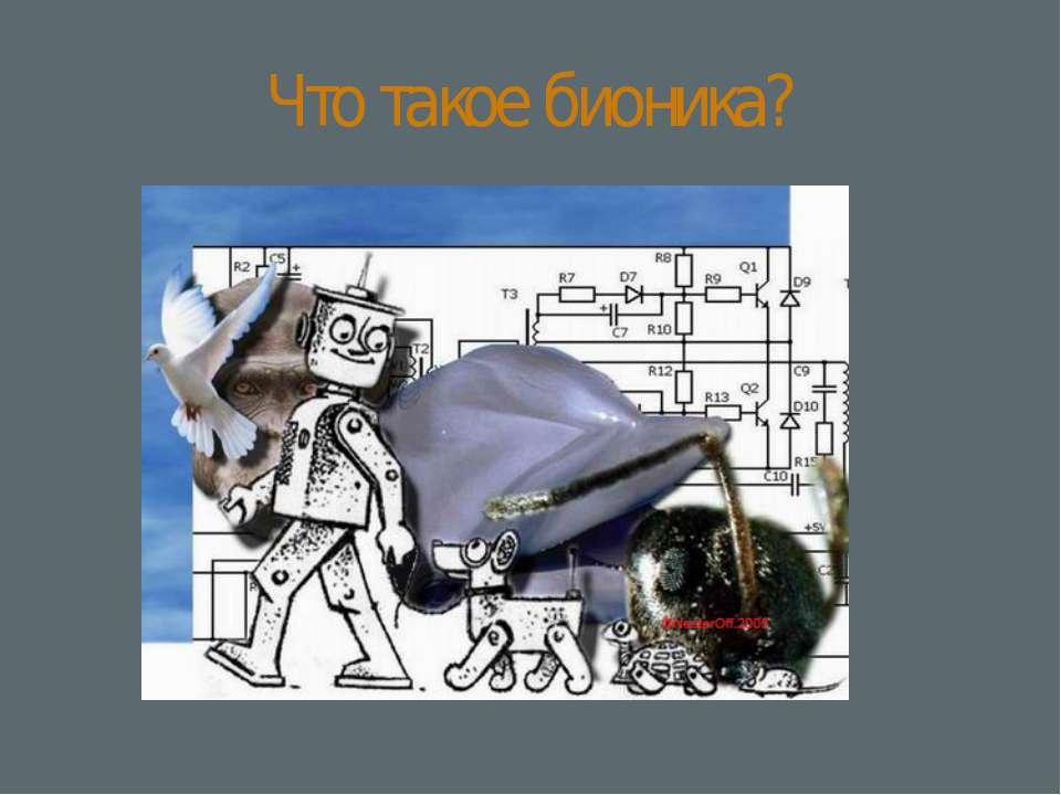 Что такое бионика?