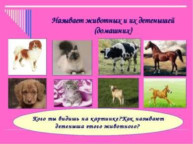 Называет животных и их детенышей (домашних) Кого ты видишь на картинке?Как на...