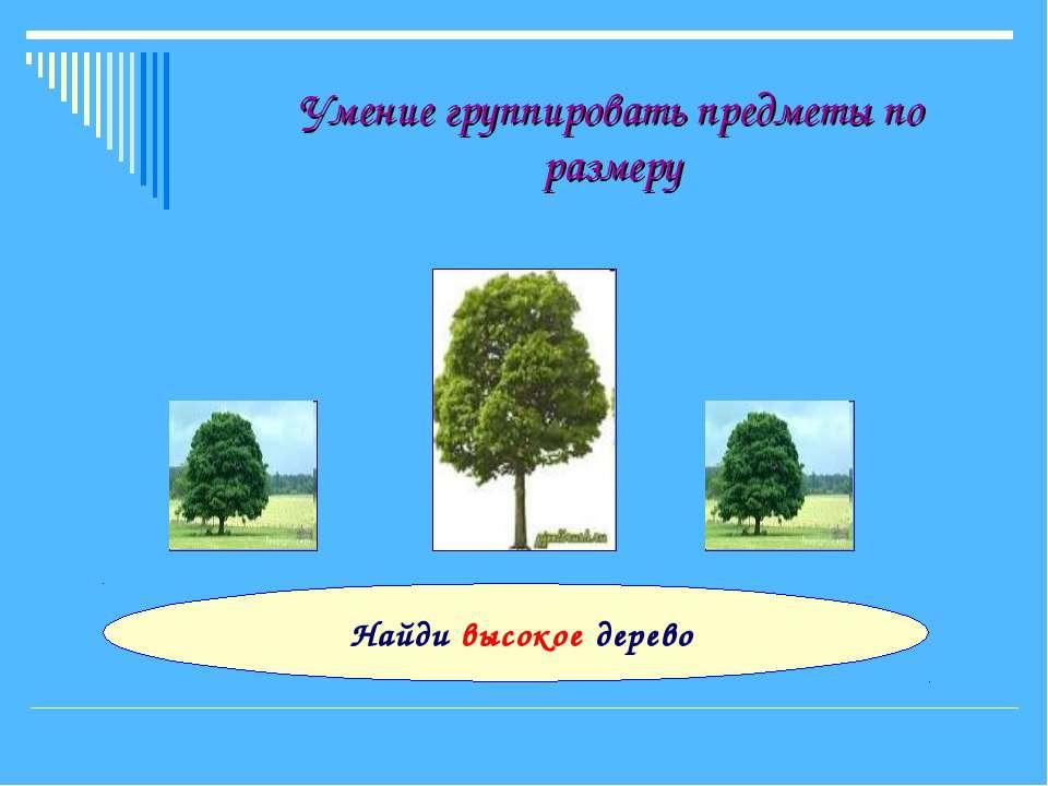 Умение группировать предметы по размеру Найди высокое дерево