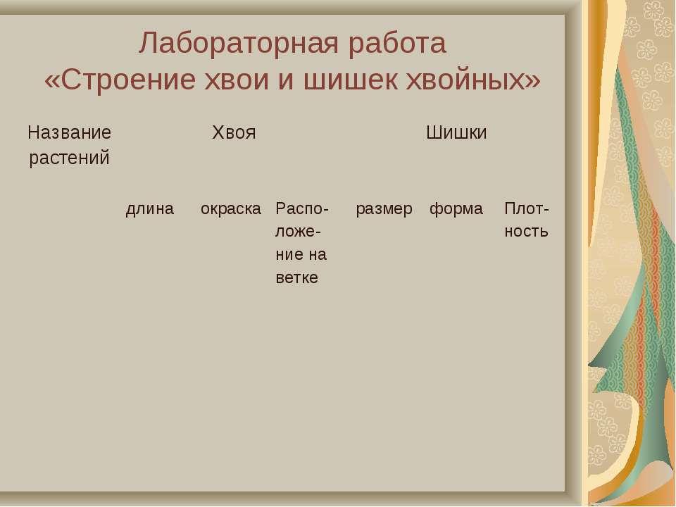 Лабораторная работа «Строение хвои и шишек хвойных» Название растений Хвоя Ши...