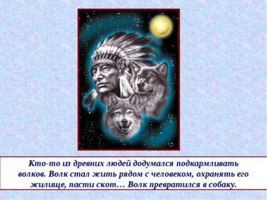 Кто-то из древних людей додумался подкармливать волков. Волк стал жить рядом ...