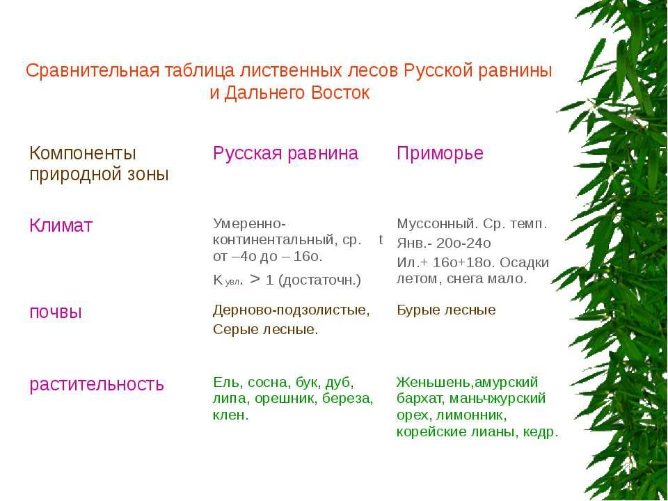 Сравнительная таблица лиственных лесов Русской равнины и Дальнего Восток Комп...