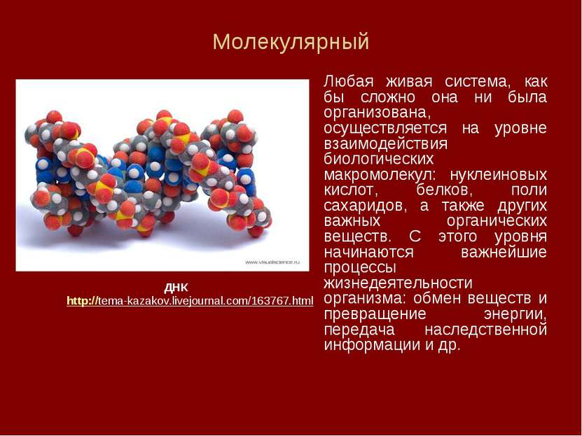 Молекулярный Любая живая система, как бы сложно она ни была организована, осу...