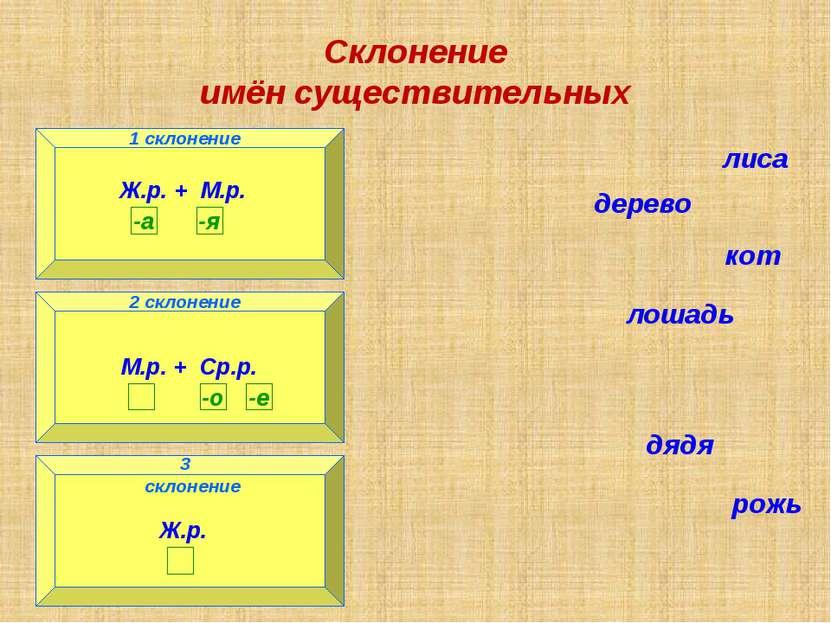 Склонение имён существительных 1 склонение 3 склонение 2 склонение лиса дерев...