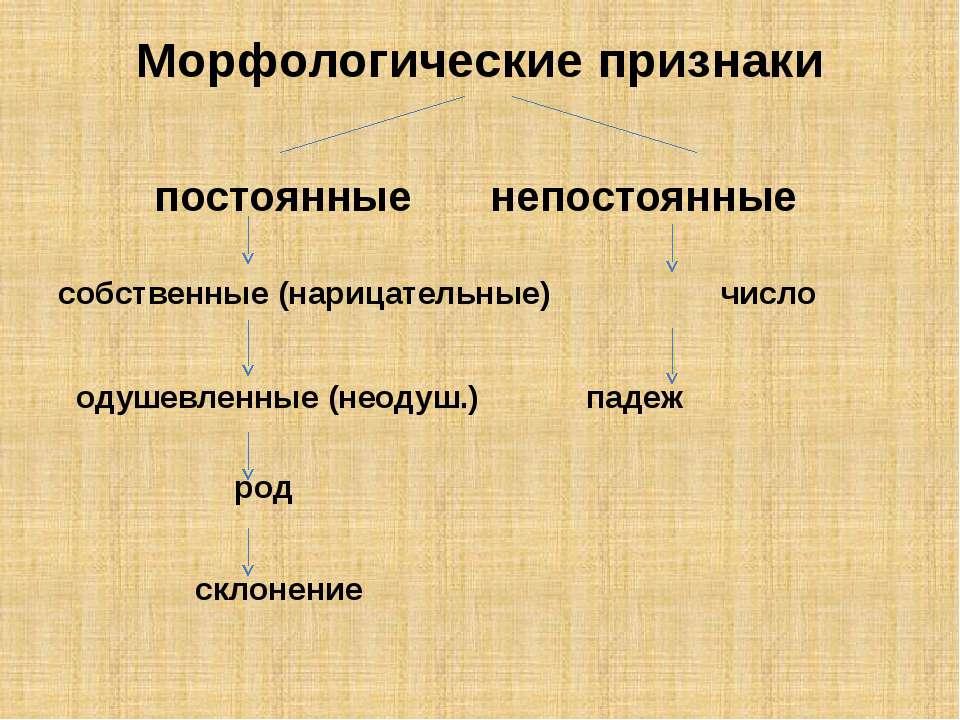 Морфологические признаки постоянные непостоянные собственные (нарицательные) ...