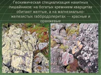 Геохимическая специализация накипных лишайников: на богатых кремнием кварцита...