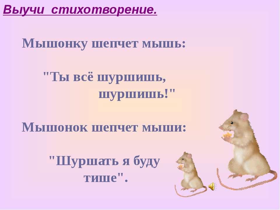 """Мышонку шепчет мышь: """"Ты всё шуршишь, шуршишь!"""" Мышонок шепчет мыши: """"Шуршать..."""