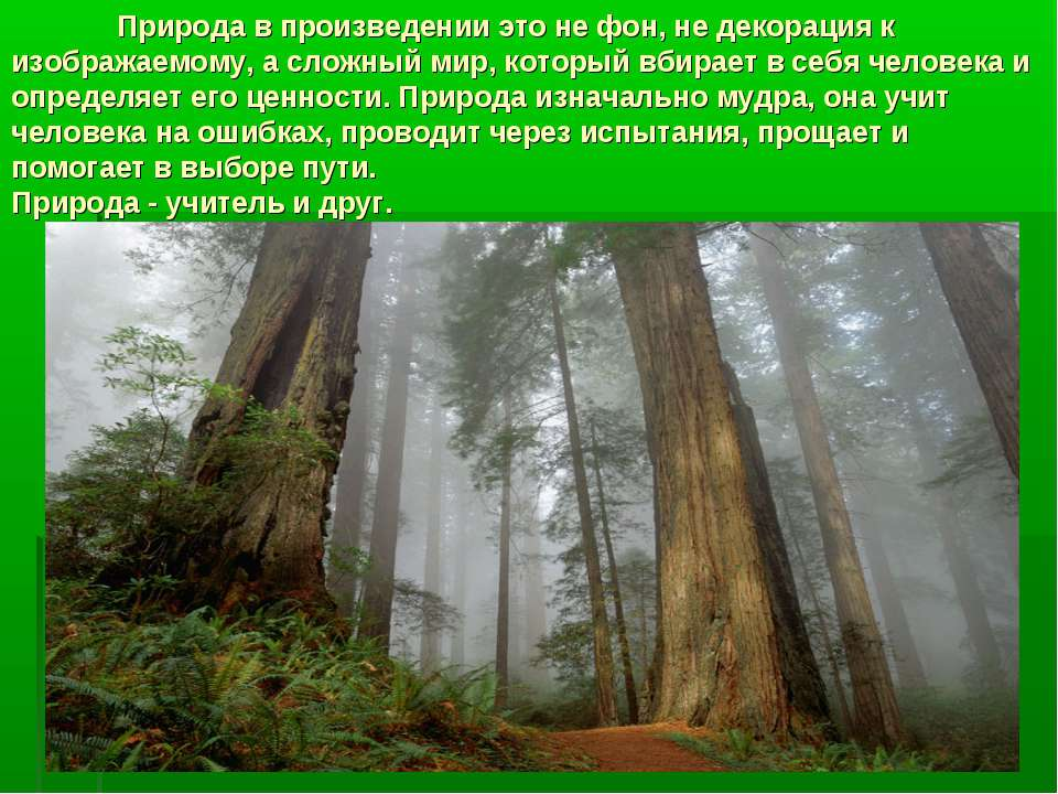 Природа в произведении это не фон, не декорация к изображаемому, а сложный ми...