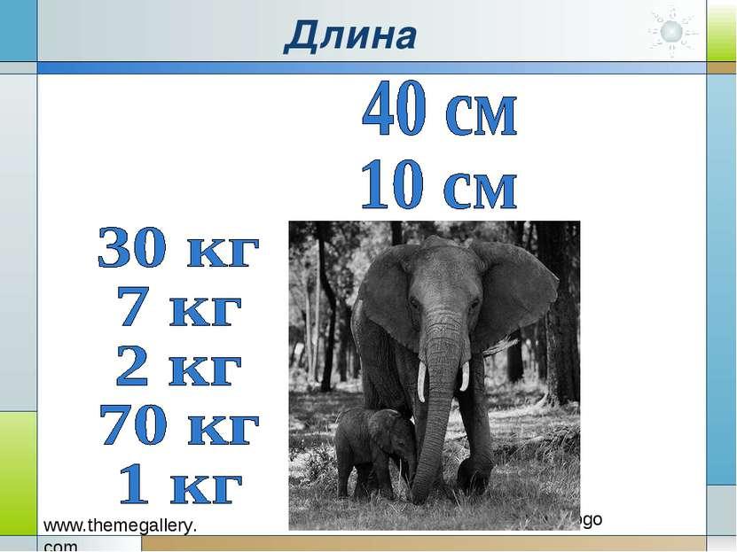 Длина