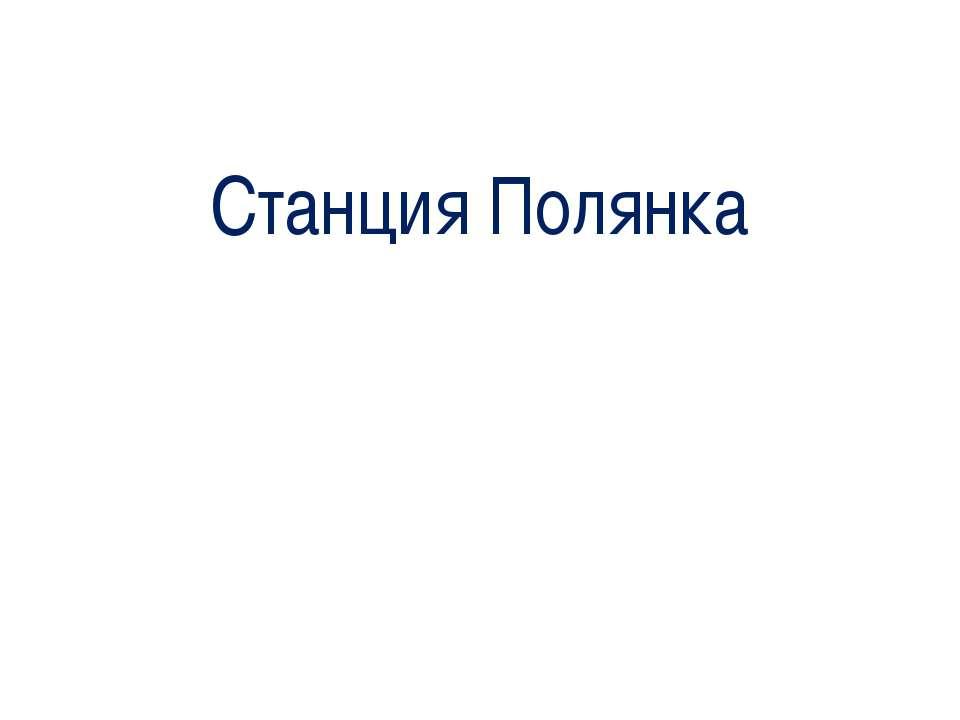Станция Полянка