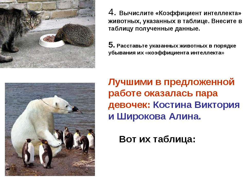 4. Вычислите «Коэффициент интеллекта» животных, указанных в таблице. Внесите ...