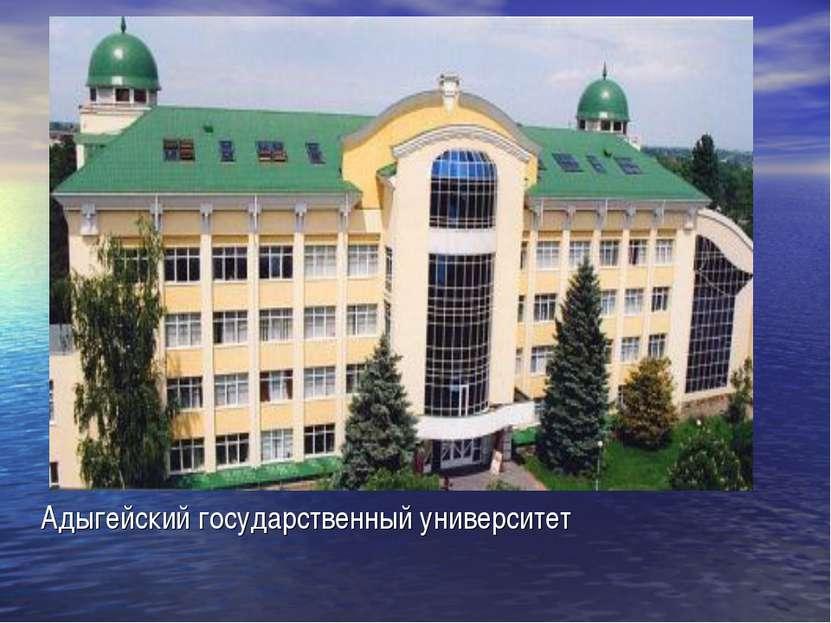 Адыгейский государственный университет