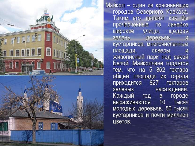 Майкоп – один из красивейших городов Северного Кавказа. Таким его делают как ...