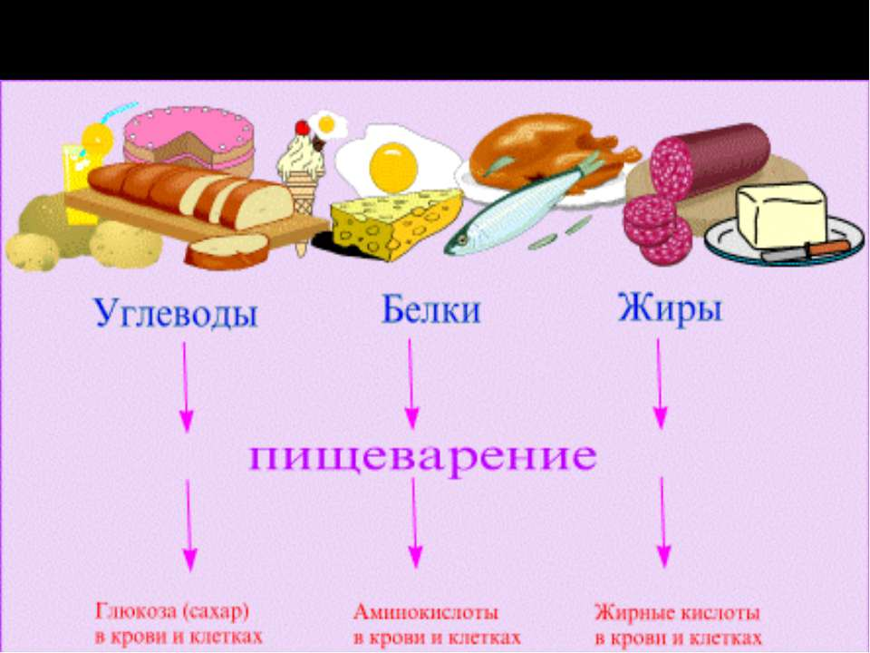 Продукты, содержащие питательные вещества